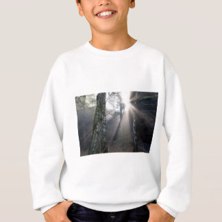 fog light forest rural landscape sweatshirt