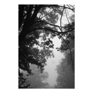 Fog Poster