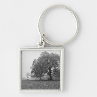 Foggy Autumn Morning Grayscale Silver-Colored Square Keychain