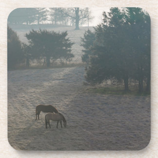 Foggy Grazing Drink Coasters