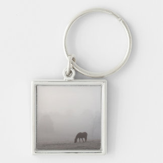 Foggy Grazing Keychain