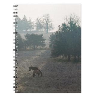 Foggy Grazing Notebook