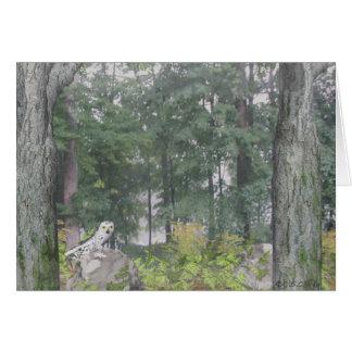 Foggy Lake Card
