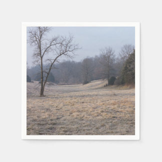 Foggy Meadow Paper Napkins