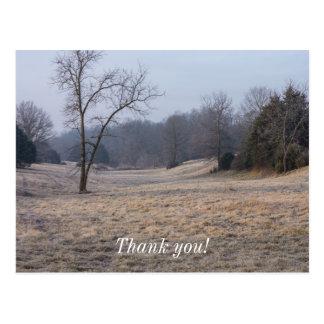Foggy Meadow Postcard