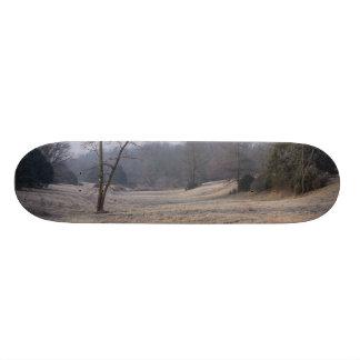 Foggy Meadow Skate Decks