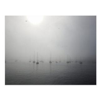 Foggy Monterey Marina Postcard