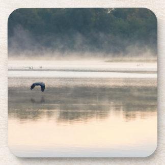 Foggy Morning Flight Coaster