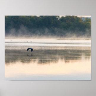Foggy Morning Flight Poster