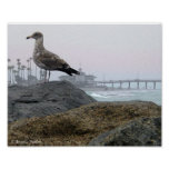 Foggy Morning in Newport Beach Print