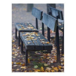 Foggy morning park bench, Germany Postcard