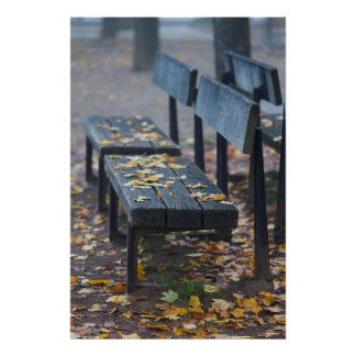 Foggy morning park bench, Germany Poster