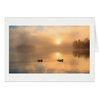 Foggy Morning With Ducks Horizontal Blank Card