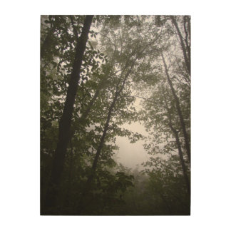 Foggy Pacific Dogwood Grove Photograph on Wood Wood Print