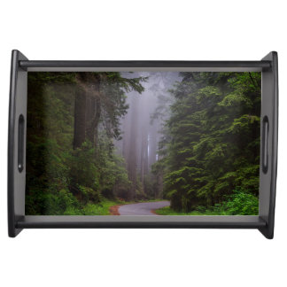 Foggy Redwood national park in northern California Serving Tray