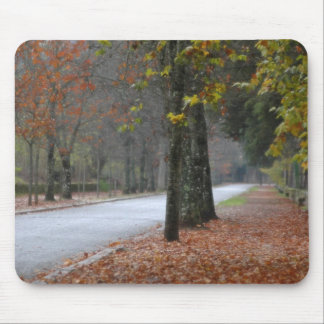 Foggy street mouse pad