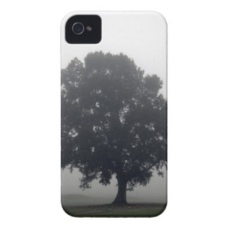 Foggy Tree iPhone 4 Cover