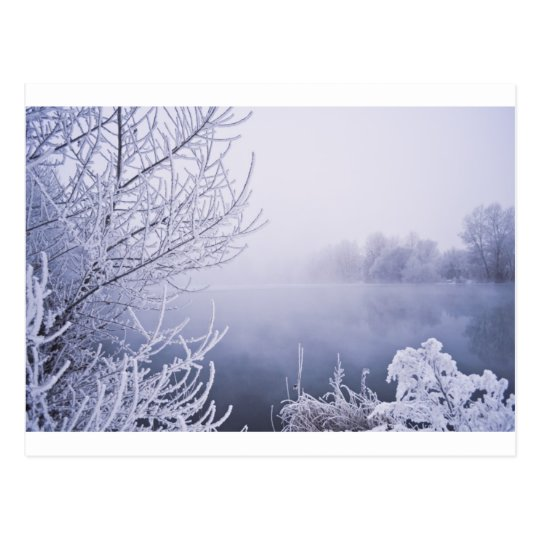 Foggy Winter Day by the River Postcard