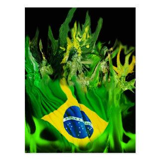 Fogo de Brasil Postcard