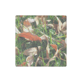 Foliage and Grass Stone Magnet