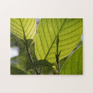 Foliage Jigsaw Puzzle