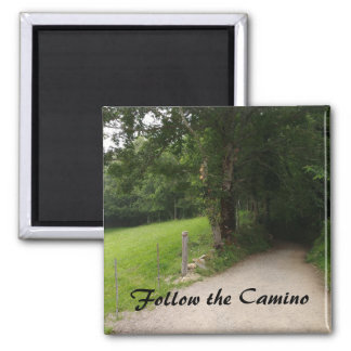 Follow the Camino Magnet