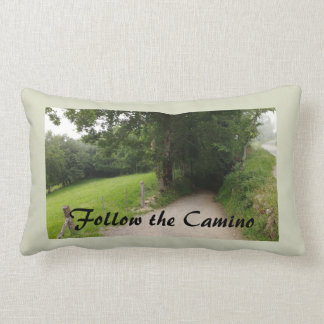 Follow the Camino Throw Pillow