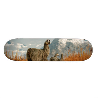 Follow the Llama Skate Decks