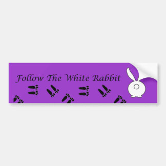 Follow The White Rabbit Bumper Sticker