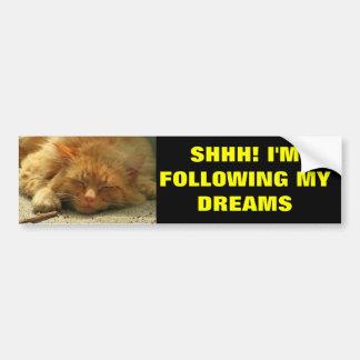 Following My Dreams Sleeping Kitty Bumper Sticker