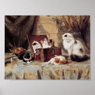 Fond of Jewelry Kitten Poster