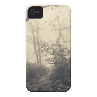 Fontainebleau Forest iPhone 4 Case-Mate Case