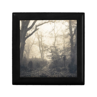 Fontainebleau Forest Keepsake Box
