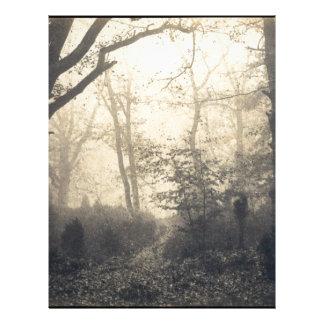 Fontainebleau Forest Letterhead