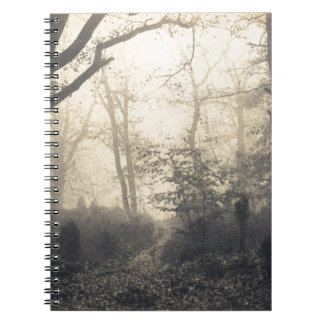 Fontainebleau Forest Notebook