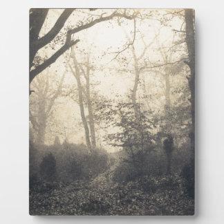 Fontainebleau Forest Plaque