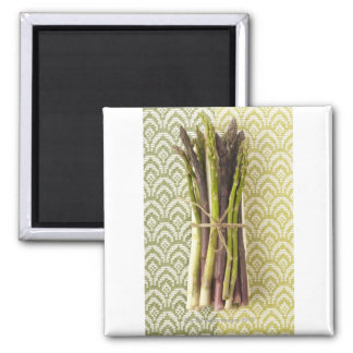 Food, Food And Drink, Vegetable, Asparagus, Square Magnet