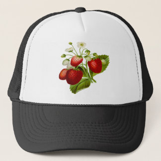 Food fruit leaf leafy leaves trucker hat