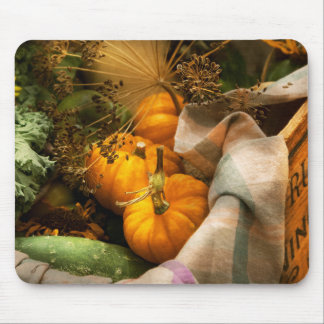 Food - Pumpkin - Summer still life Mouse Pad