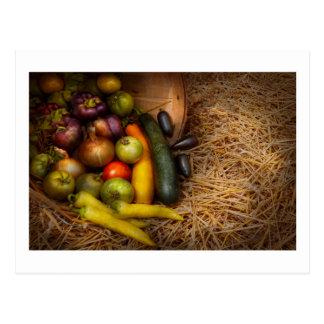 Food - Vegetables - Very early harvest Postcard