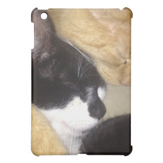 Foofy and Sandybean snuggling for a nap Cover For The iPad Mini