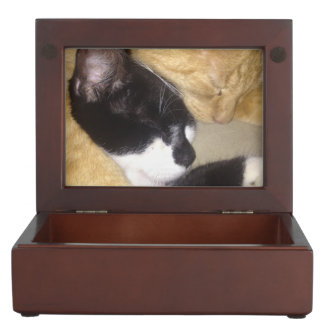 Foofy and Sandybean snuggling for a nap Keepsake Box