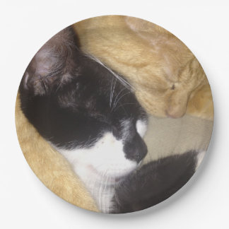 Foofy and Sandybean snuggling for a nap Paper Plate