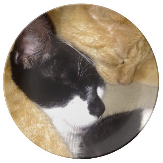 Foofy and Sandybean snuggling for a nap Plate