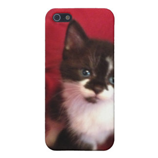 Foofy the kitten with velvet red case for iPhone 5/5S
