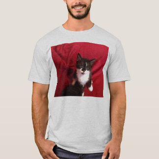 Foofy the kitten with velvet red T-Shirt