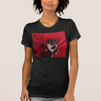Foofy the kitten with velvet red T-Shirt