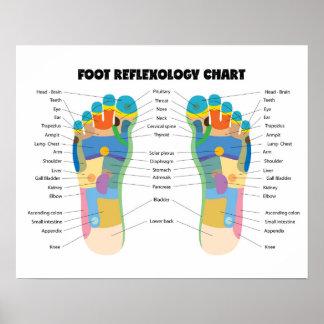 """Foot Reflexology Chart 20"""" x 16"""", (Matte) Poster"""