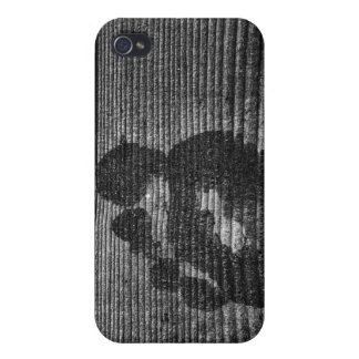 Foot Scapes Cases For iPhone 4