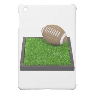 FootallOnGrass102111 iPad Mini Cases